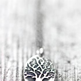 Deep Roots oval necklace